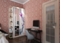 2-х дверный, корпус Дуб молочный, двери стекло белое с зеркалом, фотопечать № 539 Image 1